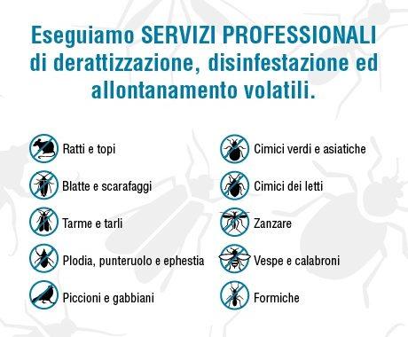 I servizi professionali di SGD